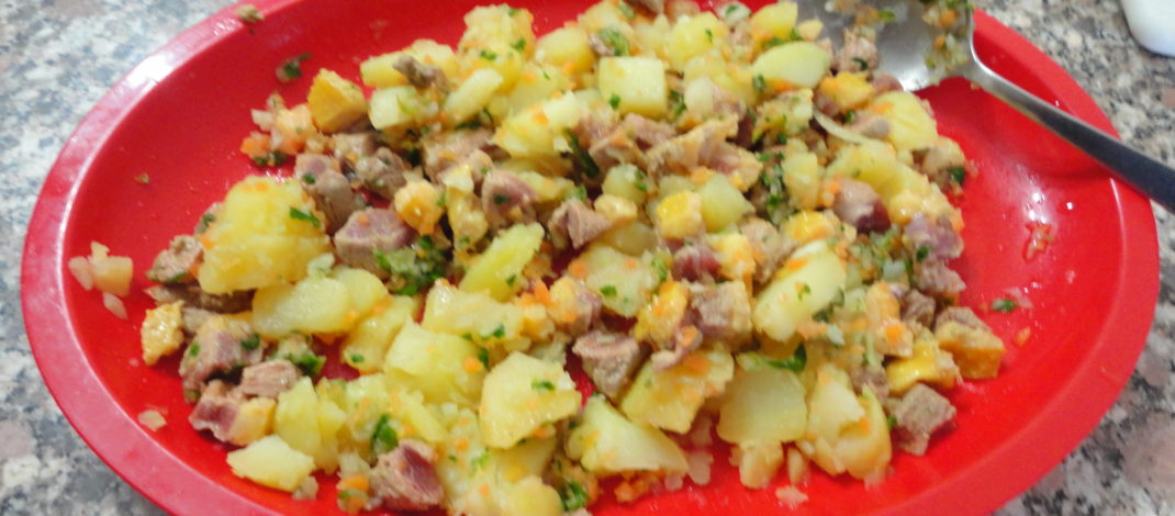 Anatra scottata con patate, carote e finocchi per cani